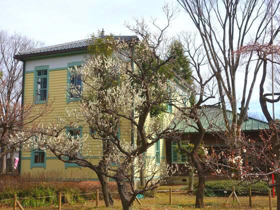 旧町役場横 梅園