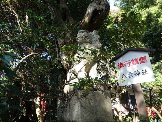 八雲神社 鎌倉 狛犬