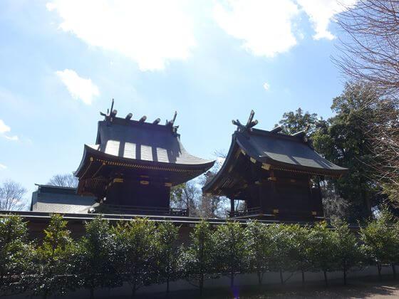 埼玉 鷲宮神社 本殿
