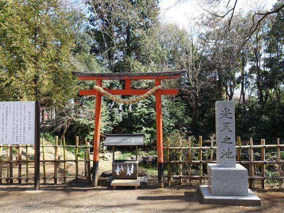 鷲宮神社 パワースポット