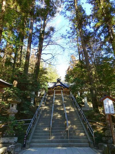 宝登山神社 境内