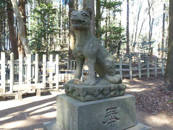 宝登山神社 狼