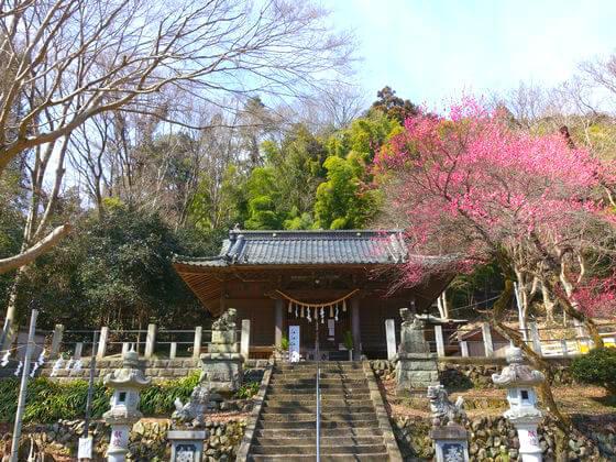 高尾氷川神社 境内