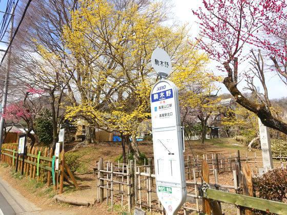 駒木野バス停