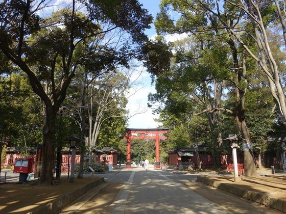 大宮 氷川神社 三の鳥居