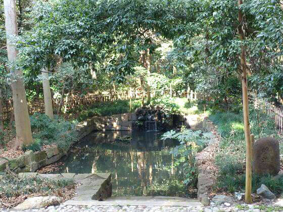 大宮 氷川神社 蛇の池