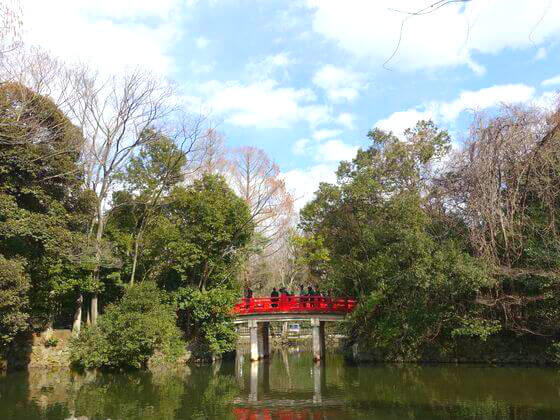 大宮 氷川神社 神池