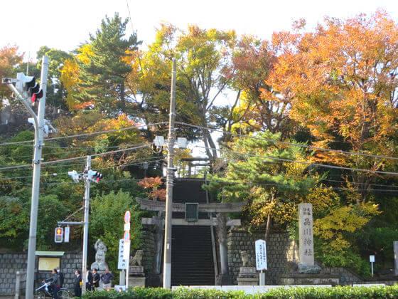 紅葉 品川神社