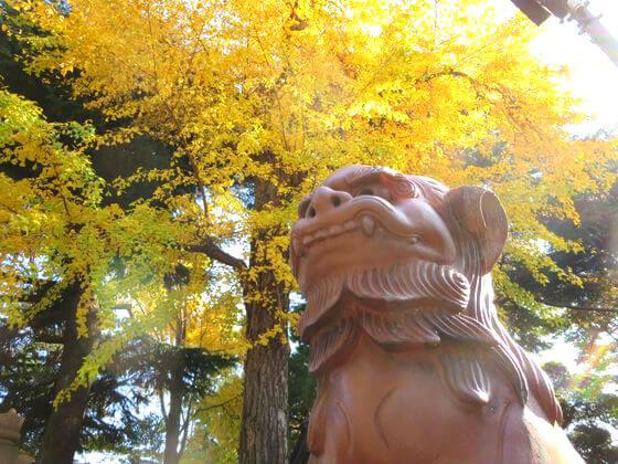 品川神社 紅葉