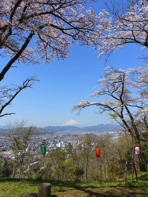 弘法山公園 桜 富士山