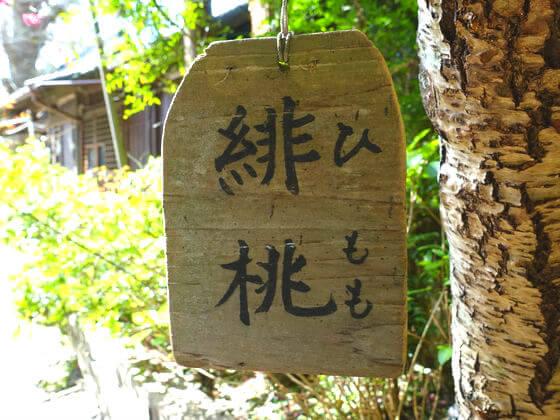 鎌倉 御霊神社 ひもも