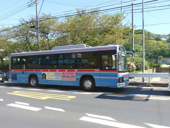 葉山 花の木公園 バス