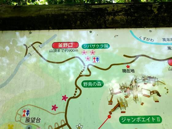吾妻山公園 芝桜 場所