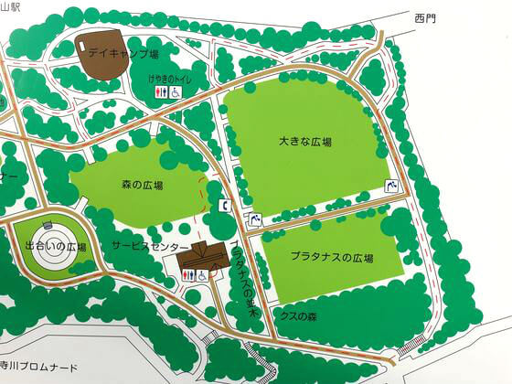 桜 林試の森公園