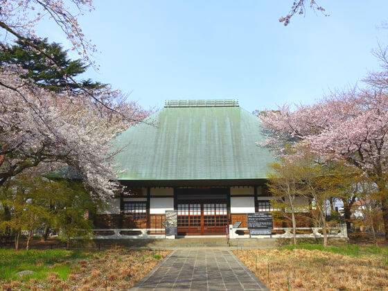 九品仏浄真寺 桜