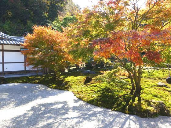 紅葉 鎌倉 長寿寺