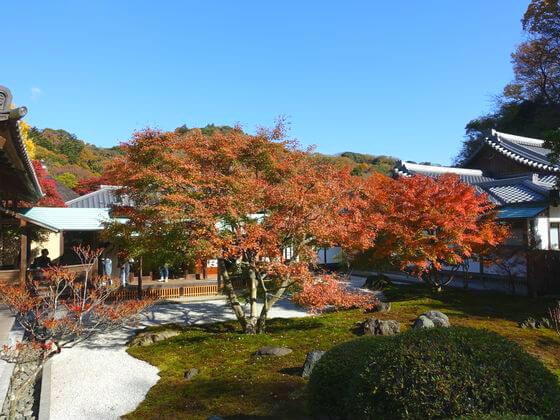 紅葉 長寿寺 鎌倉