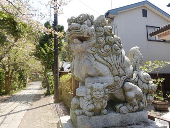 五所神社 鎌倉 狛犬