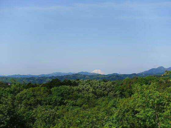 塩船観音寺 富士山