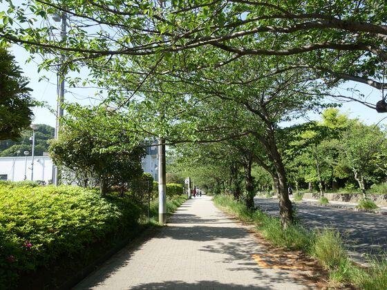 ニコン横須賀製作所