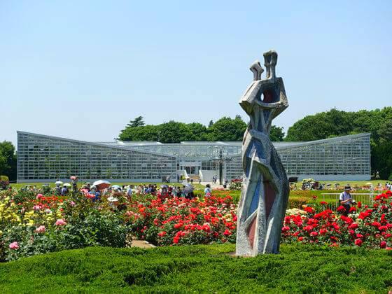 神代植物公園 バラ