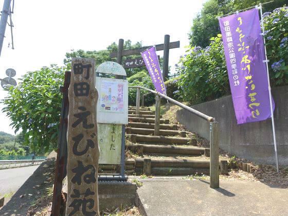 町田えびね苑