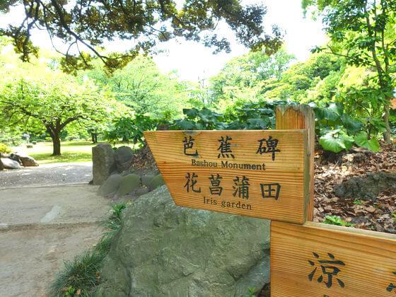 清澄庭園 花菖蒲 場所