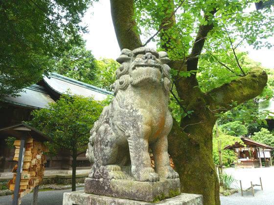 報徳二宮神社 狛犬