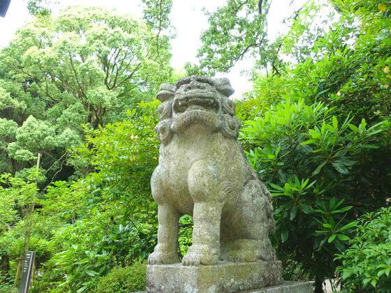 小田原 報徳二宮神社 狛犬