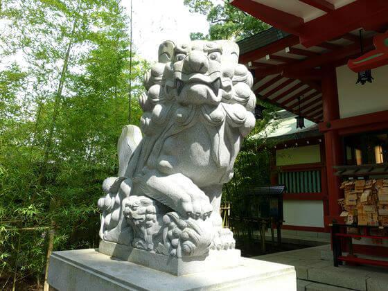 来宮神社 狛犬