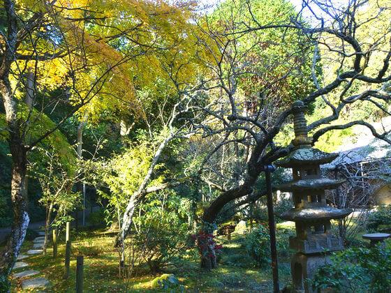 浄智寺 庭園 紅葉