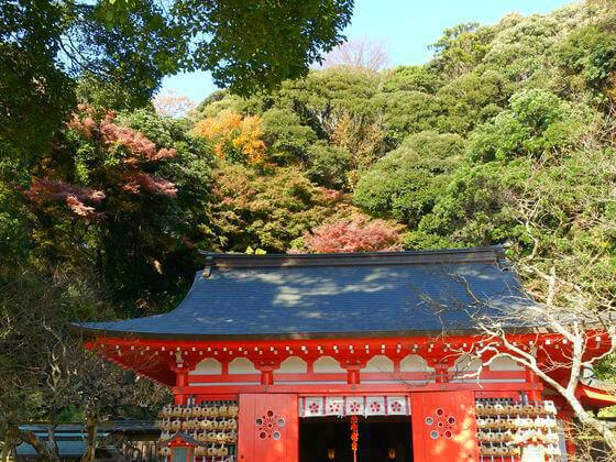 鎌倉 荏柄天神社 紅葉