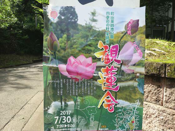 薬師池公園 観蓮会