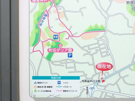 薬師池公園 ダリア園 地図
