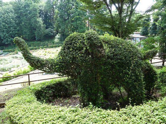町田ダリア園 みどりの動物広場