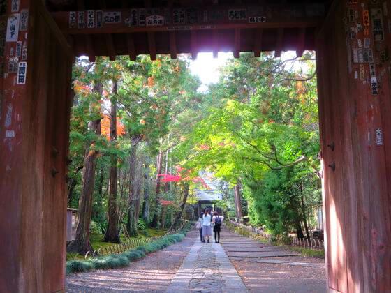 鎌倉 寿福寺 紅葉