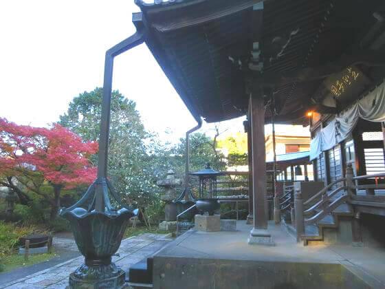 鎌倉 安国論寺 楓