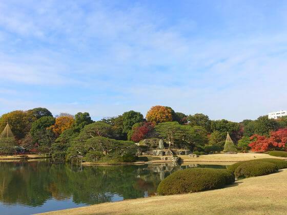 六義園 池 紅葉
