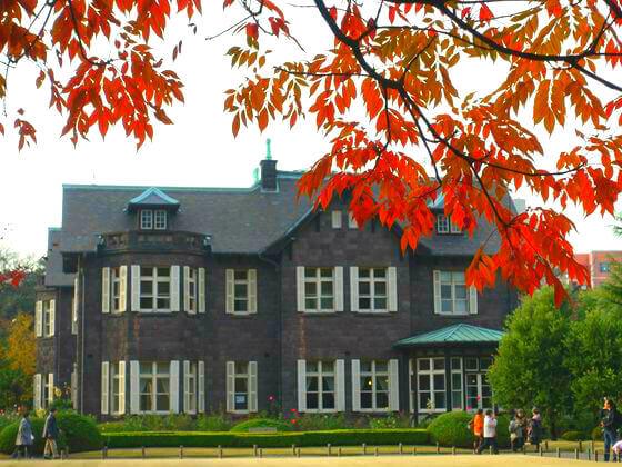 旧古河庭園 洋館 紅葉