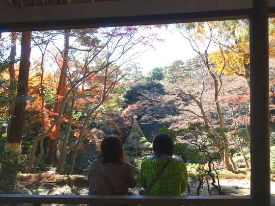 殿ヶ谷戸庭園 紅葉