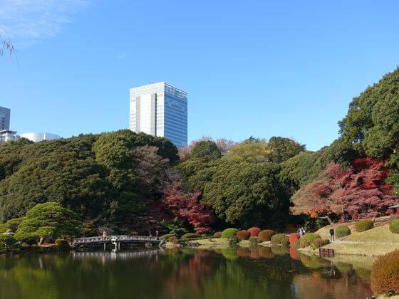 新宿御苑 上の池 紅葉