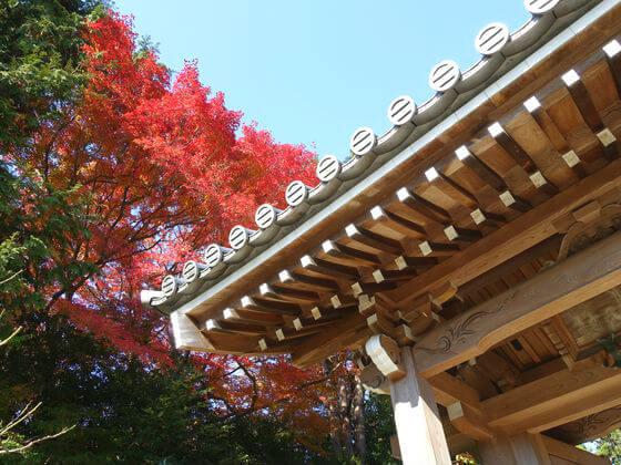 浄妙寺 鎌倉 紅葉