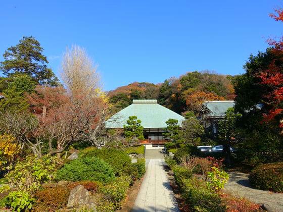 紅葉 浄妙寺 鎌倉