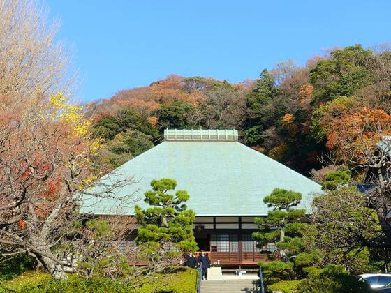 紅葉 鎌倉 浄妙寺