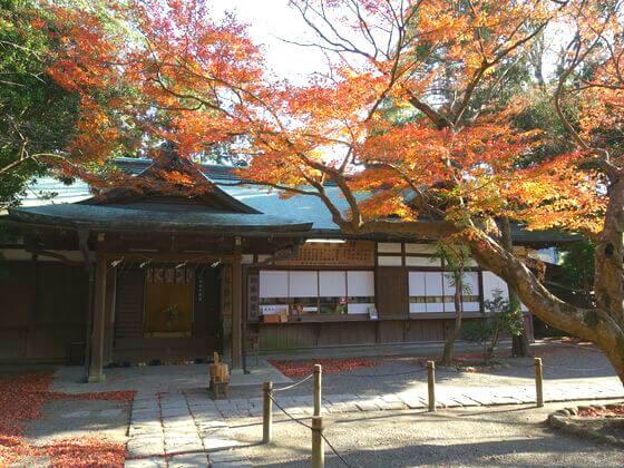 鎌倉宮 楓