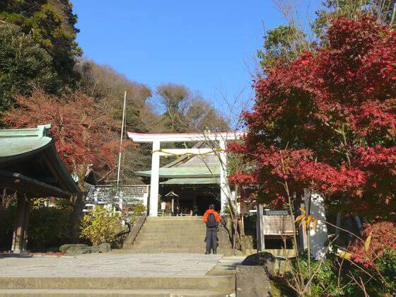 鎌倉宮 紅葉