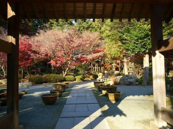 鎌倉 覚園寺 紅葉