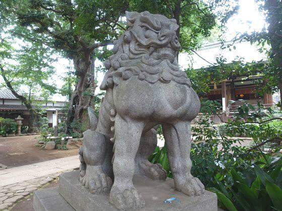 奥沢神社 狛犬