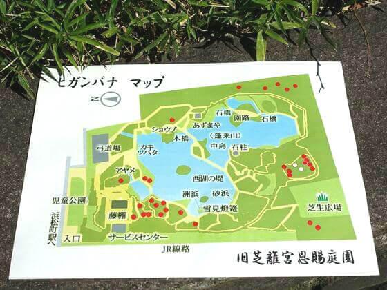 旧芝離宮恩賜庭園 彼岸花 マップ