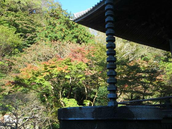 紅葉 妙本寺